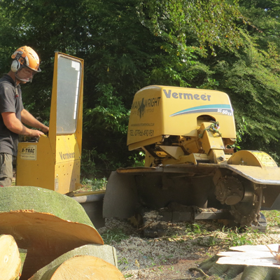 Stump Remover in Warrington
