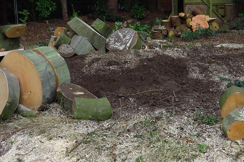 Stump Killer in Bowdon