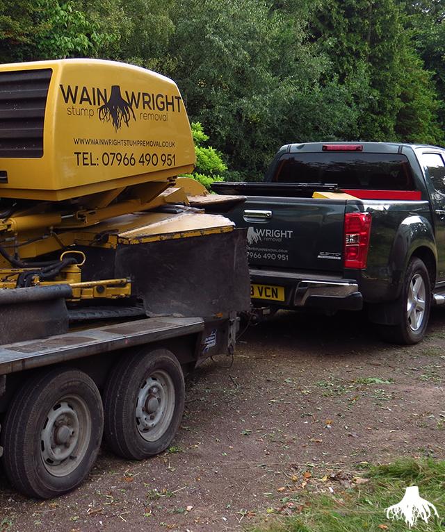 Tree Stump Removal in Bramhall