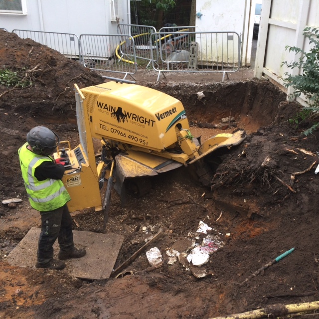 Stump Removal in Timperley