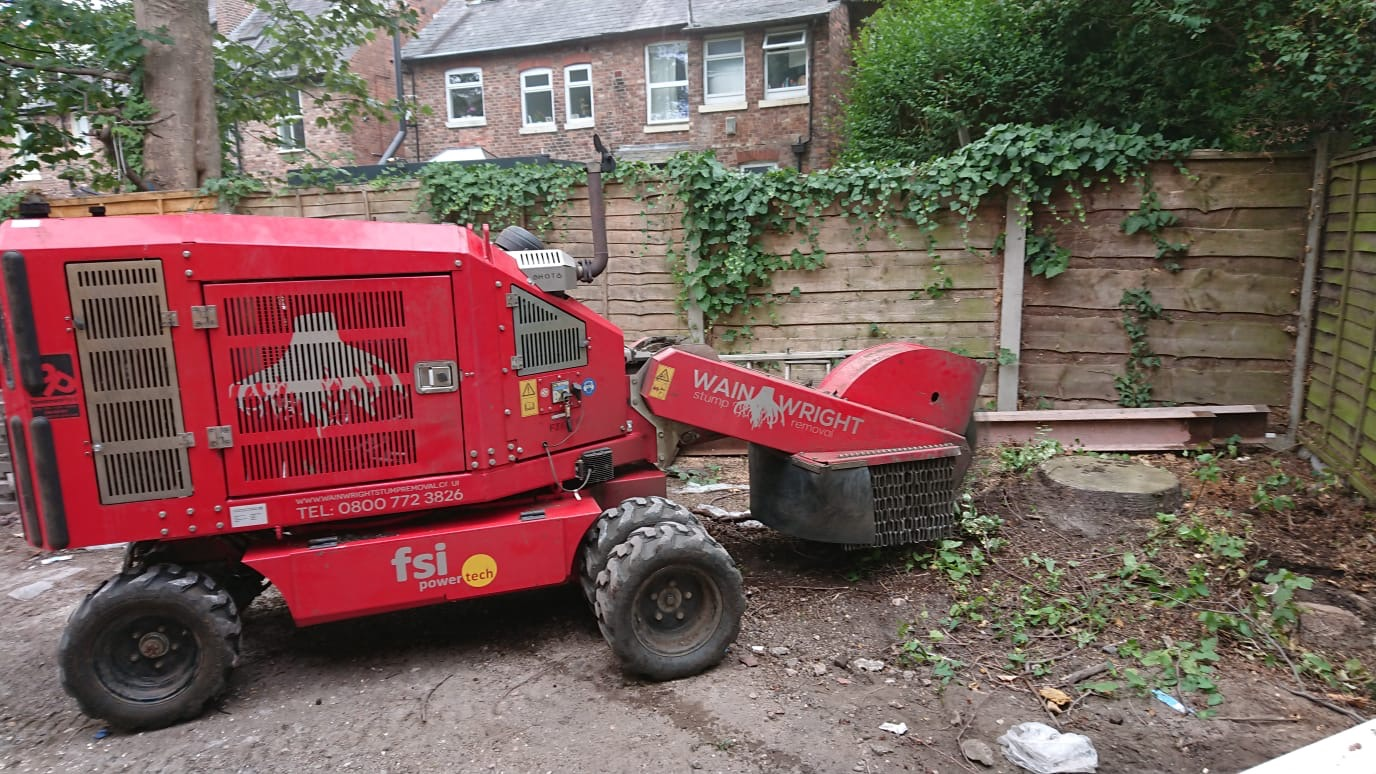 Profesional Stump Removal in Bramhall