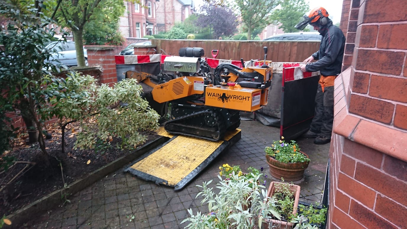 Stump Removal in Chorlton