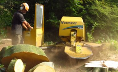 Stump Grinding in Tarporley