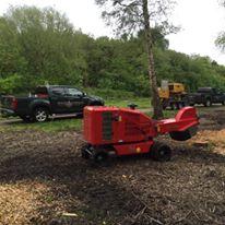 Stump Grinder in Alderley Edge