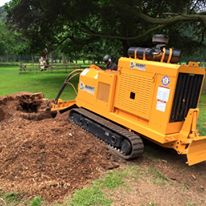 Stump grinder Bandit 2900