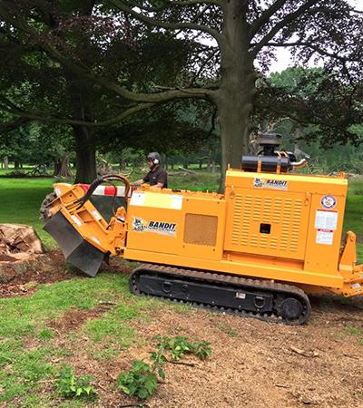 Stump Remover in Alderley Edge