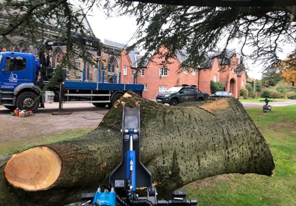 Machine Hire timber removal with Multione