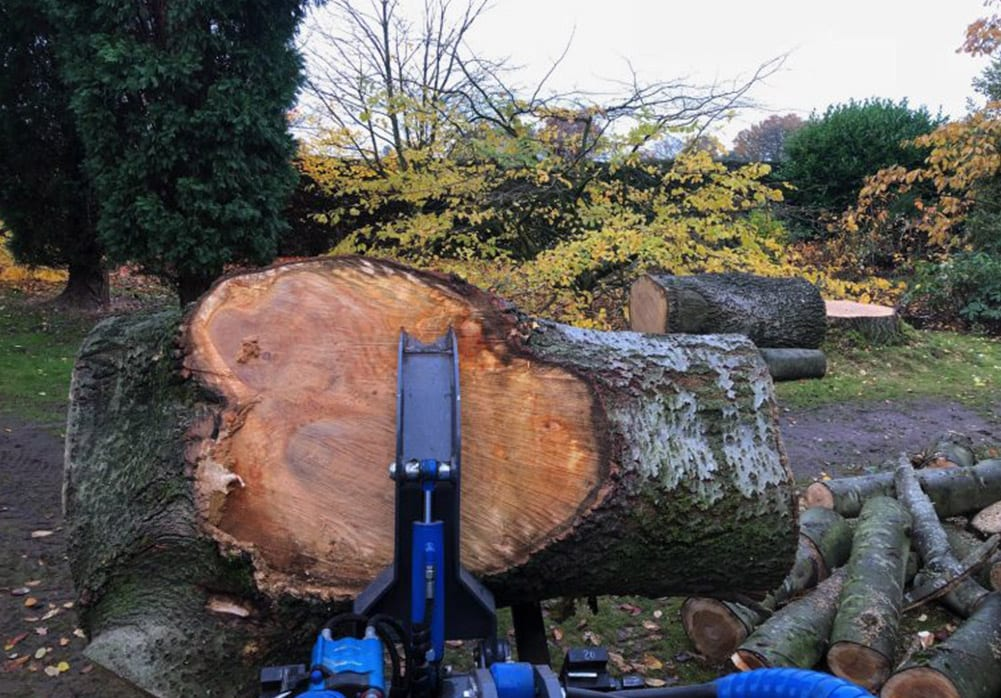 Timber removal service with machine