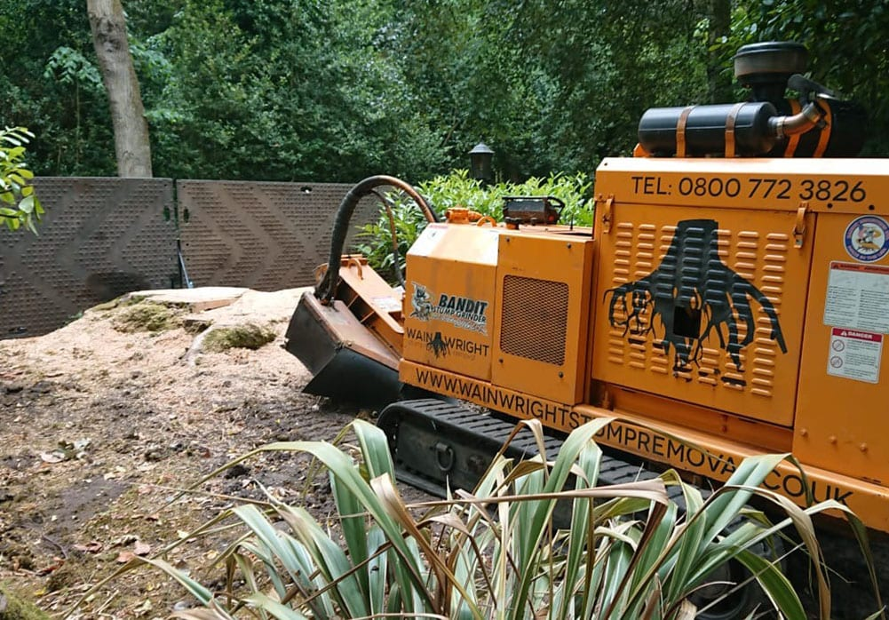 Stump grinding in Didsbury, Greater Manchester